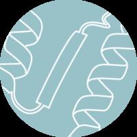 CDMO-antibodies